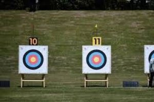 Archery Association of India named Sunil Sharma as acting president to start with the polling procedure