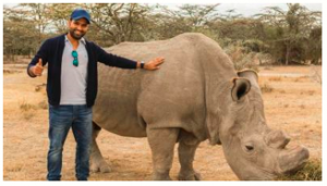 Rohit Sharma is to launch Campaign to save Rhinos in India