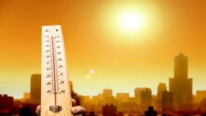 IMD summarized that 2019 is recorded as the seventh warmest year