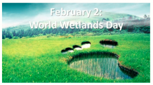 February 2 as World Wetlands Day